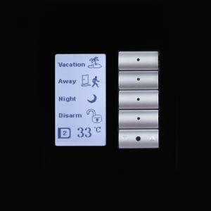 Клавишная настенная панель с экраном DLP (US)